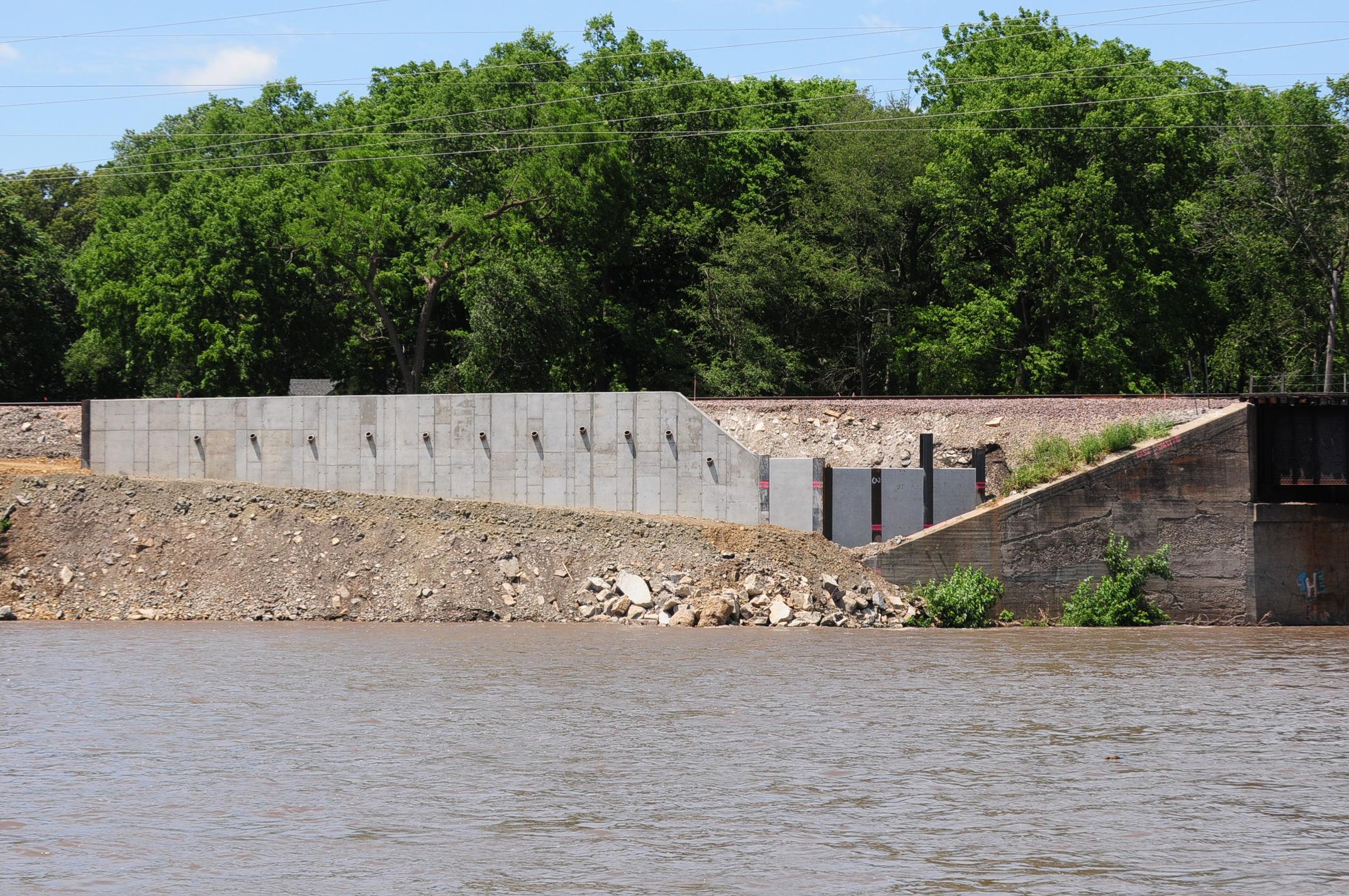 Kankakee River 6.16.17 west bank